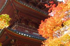 神戸市太山寺02