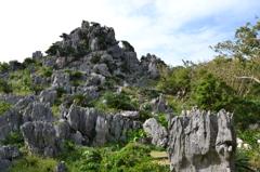 大石林山 1