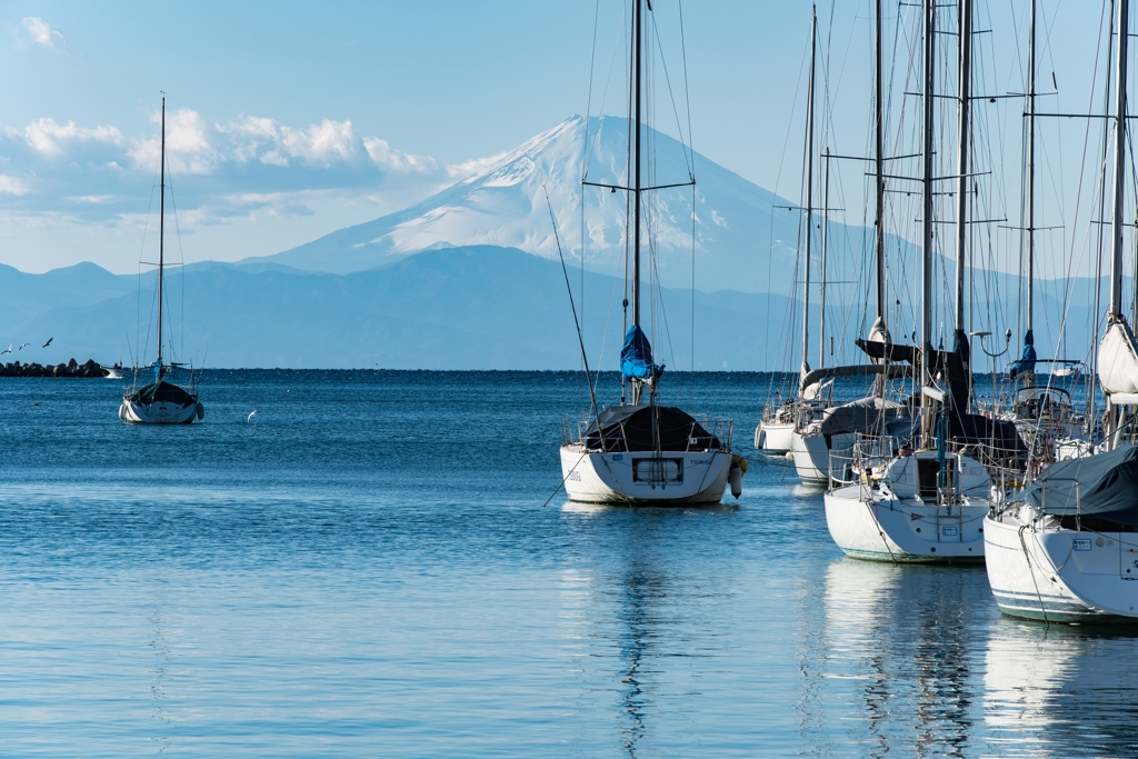 諸磯湾と富士山