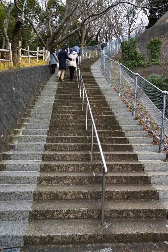 吾妻山公園の階段