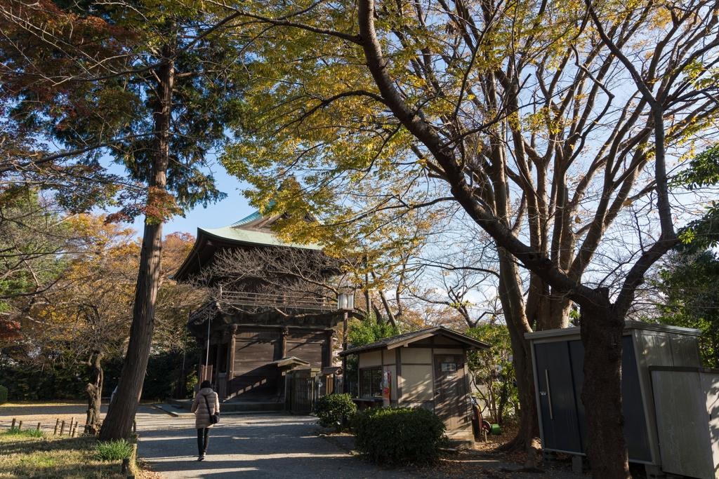 秋の称名寺