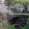 桜と石橋と
