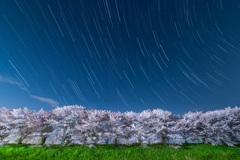 春の嵐 2021Ver.