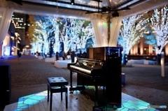 トレリスストリートピアノ