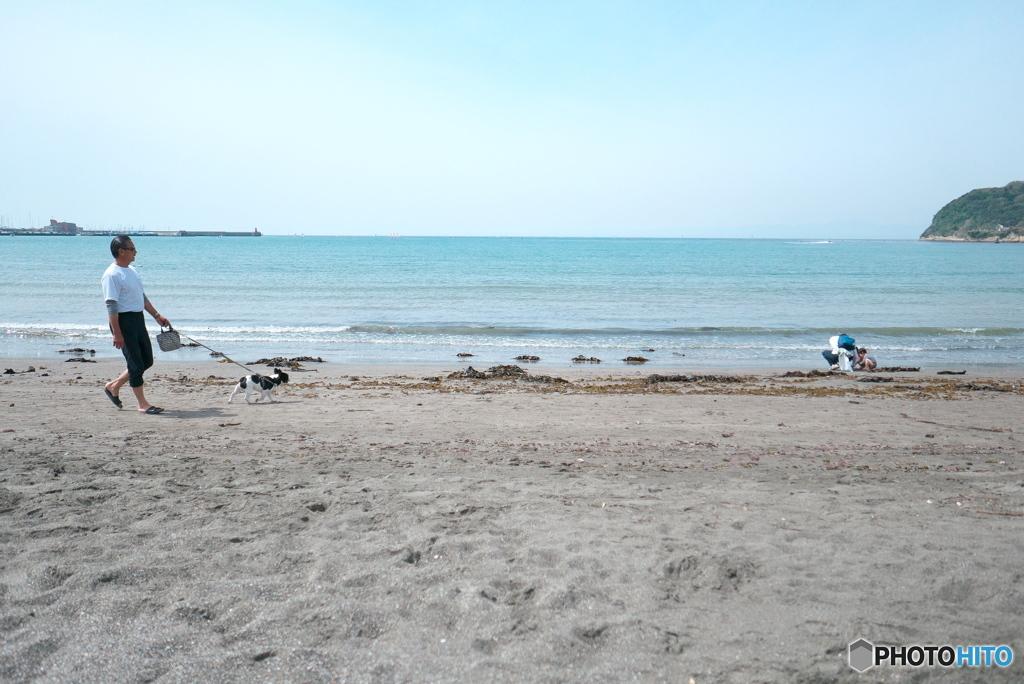午前の逗子海岸 2