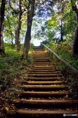 晩秋への階段
