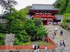一応鶴岡八幡宮の写真