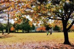 スポーツの秋