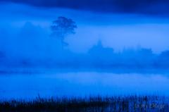 幻の湖と貴婦人の目覚め