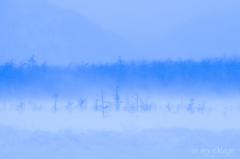 Crystal Snow Dream(入選作品)
