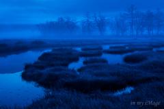 蒼い霧の幻惑