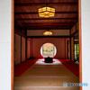 明月院 鎌倉-1