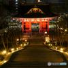 重文 台徳院霊廟-2【蔵出-2014】