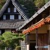 日本民家園 川崎 - 2