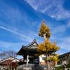 鎌倉 本覚寺-2