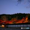 晩秋の夜 京都-3