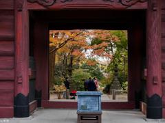鎌倉 妙本寺-10