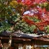 庭園美術館 目黒-2