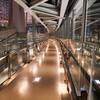 夜の東京国際フォーラム 有楽町-2