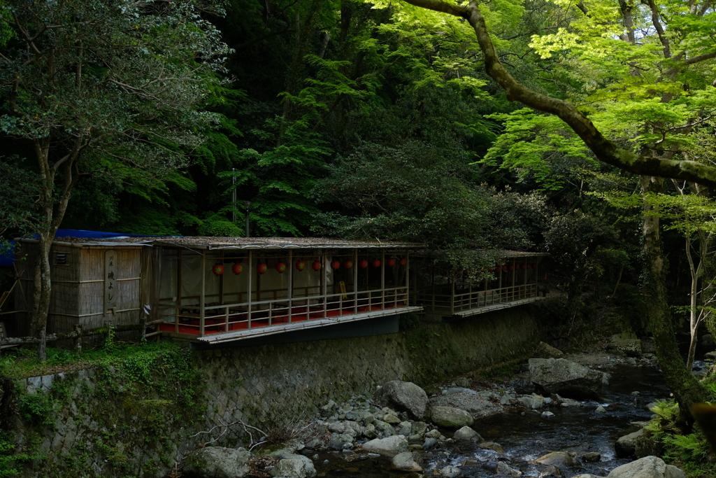 木陰の茶屋