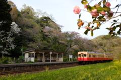 トトロの駅。