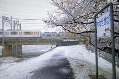 11月の初雪。