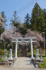 宇佐八幡神社、仙台市。