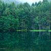 深緑に染まる湖畔