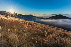 黄金の丘と雲海