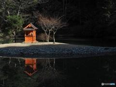 冬日の浄土庭園