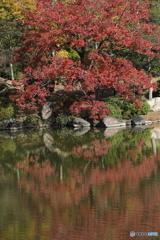 庭園秋模様