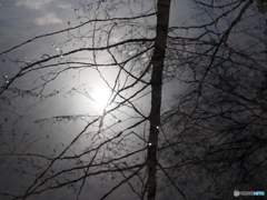 ある冬の日