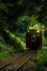 森のトンネルを