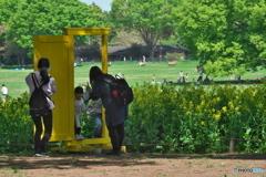 黄色い扉 P1173232