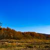少し前の秋空3