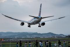 夕暮れのひと時 「Boeing 787-8 Dreamliner」