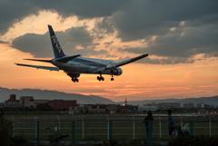 夕暮れの到着便。 「Boeing 767-300」