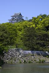 新緑の和歌山城 其の二