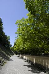 新緑の和歌山城 其の九