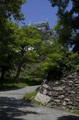 新緑の和歌山城 其の五