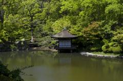 新緑の和歌山城 其の八