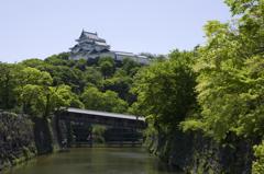 新緑の和歌山城 其の十一