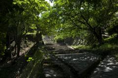 新緑の和歌山城 其の七
