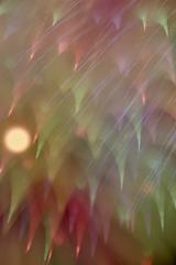 虹の降る夜