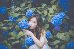 「紫陽花美」