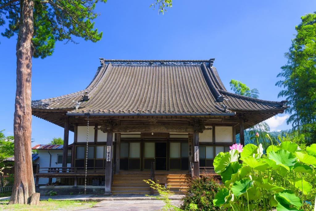 夏の浄専寺