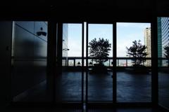 自動扉の向こう側