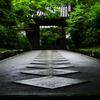 路。南禅寺