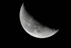 朝も早よからお月撮り