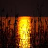 湖面の色は刻々と変わり、今はオレンジ